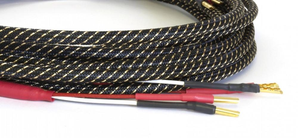 True Colours Industries (TCI) King-Cobra Terminated